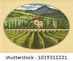 hand drawn landscape. antique... | Shutterstock . vector #1019311231