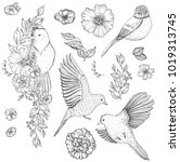set of of birds and flowers ... | Shutterstock .eps vector #1019313745