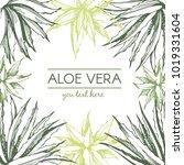 Aloe Vera Frame. Botanical Han...
