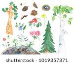 Illustration Of Different Tree...