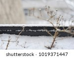 snow in winter. cold weather.... | Shutterstock . vector #1019371447