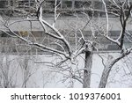 snow in winter on a rooftop.... | Shutterstock . vector #1019376001