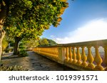 Terrace With Trees Of Mimosa I...