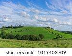 blue sky and green fields  in...   Shutterstock . vector #1019403709