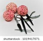 manicure pedicure set   Shutterstock . vector #1019417071