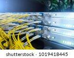 fiber optical connector... | Shutterstock . vector #1019418445