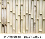 bamboo fence texture background | Shutterstock . vector #1019463571