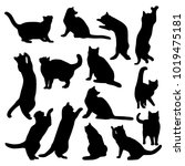 vector set of silhouettes of... | Shutterstock .eps vector #1019475181