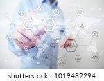 organisation structure chart ... | Shutterstock . vector #1019482294