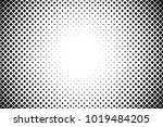 abstraction pixels black and... | Shutterstock . vector #1019484205