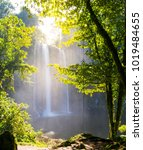 misol ha waterfall surrounded... | Shutterstock . vector #1019484655