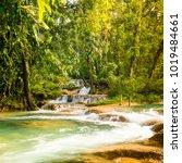 agua azul waterfall near... | Shutterstock . vector #1019484661