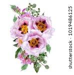 floral background.bouquet ... | Shutterstock . vector #1019486125