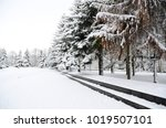 winter landscape with snow   Shutterstock . vector #1019507101