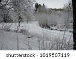 winter landscape with snow   Shutterstock . vector #1019507119
