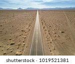 drought landscape of death... | Shutterstock . vector #1019521381