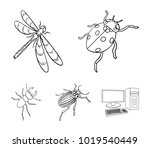 arthropods insect ladybird ...   Shutterstock .eps vector #1019540449