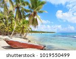 wooden boat on the beach of... | Shutterstock . vector #1019550499