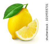 lemon fruit slice with leaf... | Shutterstock . vector #1019555731