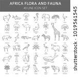 flat african flora and fauna ... | Shutterstock .eps vector #1019561545
