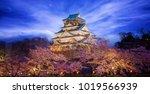 himeji castle in osaka with... | Shutterstock . vector #1019566939