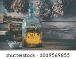 tincture or potion bottle  old... | Shutterstock . vector #1019569855
