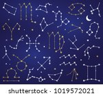 vector collection of zodiac... | Shutterstock .eps vector #1019572021