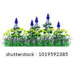 summer flowerbed with flowers... | Shutterstock .eps vector #1019592385