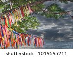 wish tree with color decorated...   Shutterstock . vector #1019595211