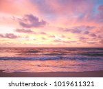 colorful sunset on the tropical ... | Shutterstock . vector #1019611321