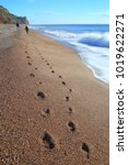 Footprints On The Pebble Beach...