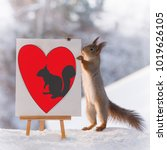 red squirrel with a painting... | Shutterstock . vector #1019626105