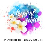 abstract travel background with ... | Shutterstock .eps vector #1019643574