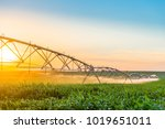 center pivot irrigation system... | Shutterstock . vector #1019651011