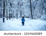 winter picture  snow parks | Shutterstock . vector #1019660089
