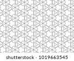 seamless geometric ornamental... | Shutterstock .eps vector #1019663545