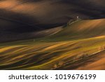 multicolored rural spring ... | Shutterstock . vector #1019676199