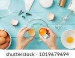female hands separate egg white ... | Shutterstock . vector #1019679694