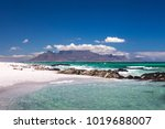 cape town scenic view of table... | Shutterstock . vector #1019688007