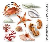 set of illustrations  badges ... | Shutterstock . vector #1019700151