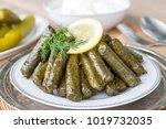 sarma  stuffed grape leaves in...   Shutterstock . vector #1019732035