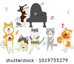 cat and dog  concert... | Shutterstock .eps vector #1019755279