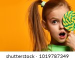 happy young little child girl... | Shutterstock . vector #1019787349