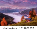 amazing autumn landscape on... | Shutterstock . vector #1019852557