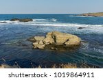 seascape with bird island near... | Shutterstock . vector #1019864911