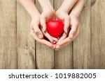 red heart in hands | Shutterstock . vector #1019882005