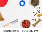 dry dog pet food in bowl and... | Shutterstock . vector #1019887195