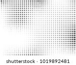 abstract geometric pattern with ... | Shutterstock .eps vector #1019892481