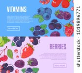 natural vitamins flyers with... | Shutterstock .eps vector #1019896771