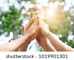 four hand up of people working... | Shutterstock . vector #1019901301